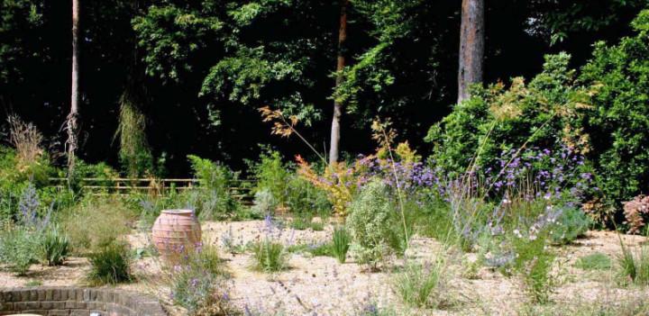 Simply garden design ascot circular route Simply garden design